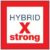 Symbol Hybrid